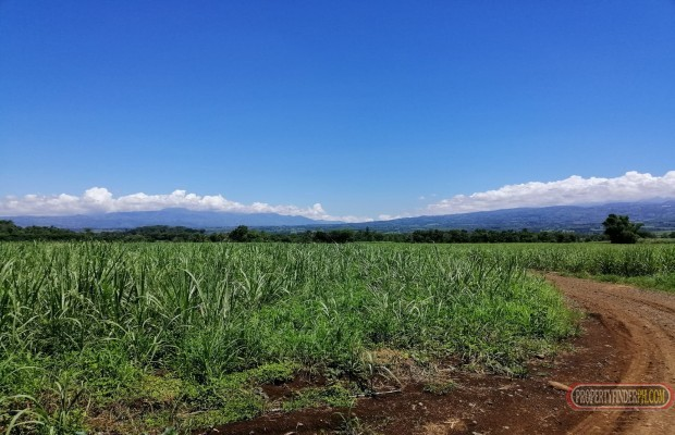 Photo #2 Agricultural Land for sale in Bukidnon, Malaybalay City
