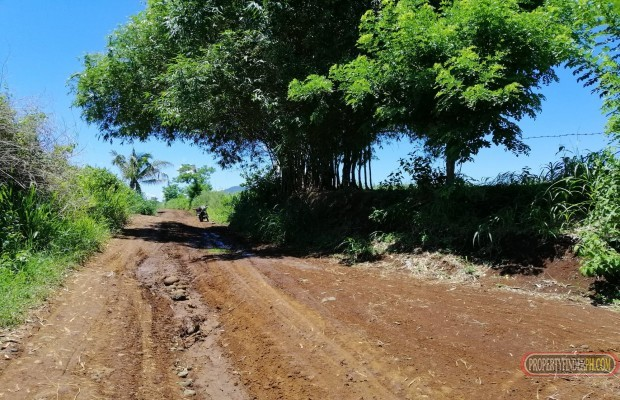 Photo #3 Agricultural Land for sale in Bukidnon, Malaybalay City