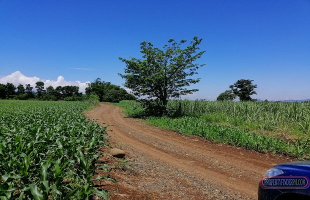 Photo #7 Agricultural Land for sale in Bukidnon, Malaybalay City