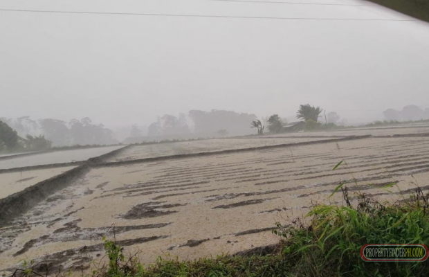 Photo #4 Agricultural Land for sale in Bukidnon, Malaybalay City