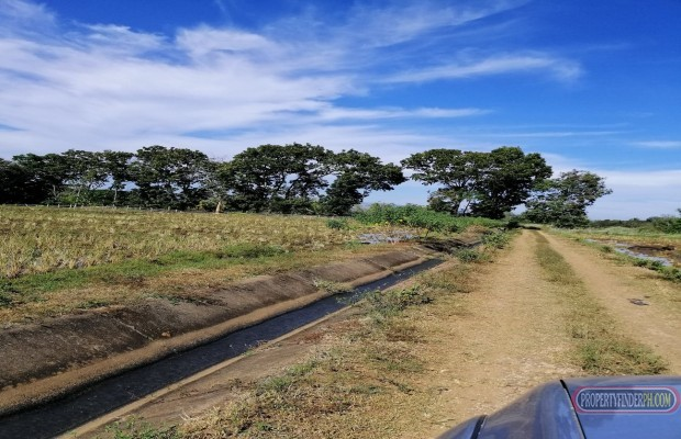 Photo #1 Agricultural Land for sale in Bukidnon, Baungon