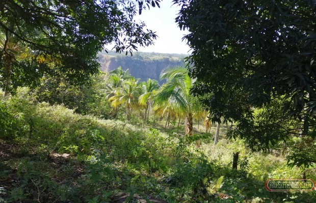 Photo #4 Agricultural Land for sale in Bukidnon, Baungon