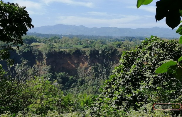 Photo #5 Agricultural Land for sale in Bukidnon, Baungon