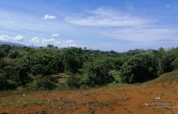 Photo #6 Agricultural Land for sale in Bukidnon, Baungon