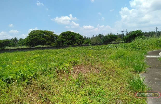 Photo #2 Residential Land for sale in Quezon, Tiaong