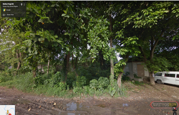 Photo #3 Commercial Land for sale in Davao del Sur, Davao City