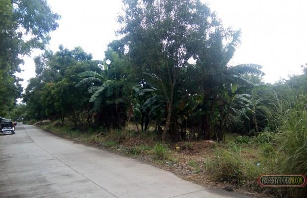 Photo #1 Commercial Land for sale in Cavite, Gen. Mariano Alvarez