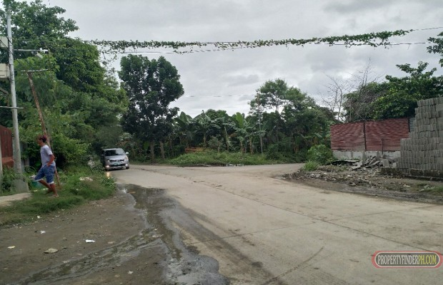Photo #2 Commercial Land for sale in Cavite, Gen. Mariano Alvarez