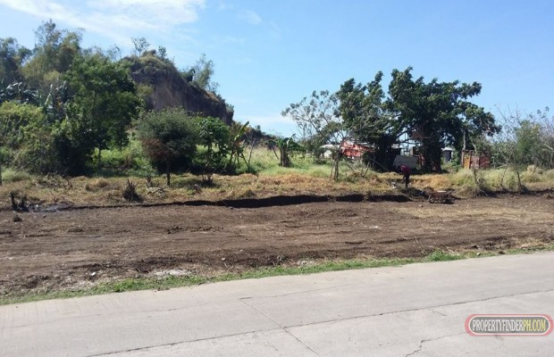 Photo #2 Residential Land for sale in Rizal, Binangonan