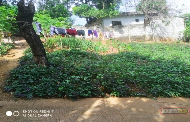 Photo #6 Residential Land for sale in Rizal, Antipolo City