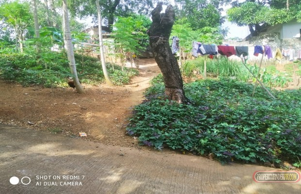 Photo #7 Residential Land for sale in Rizal, Antipolo City