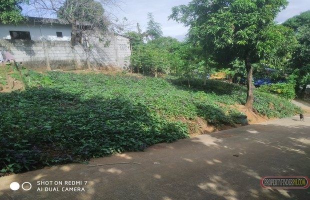 Photo #9 Residential Land for sale in Rizal, Antipolo City