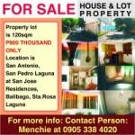 View listing ID ref#45796
